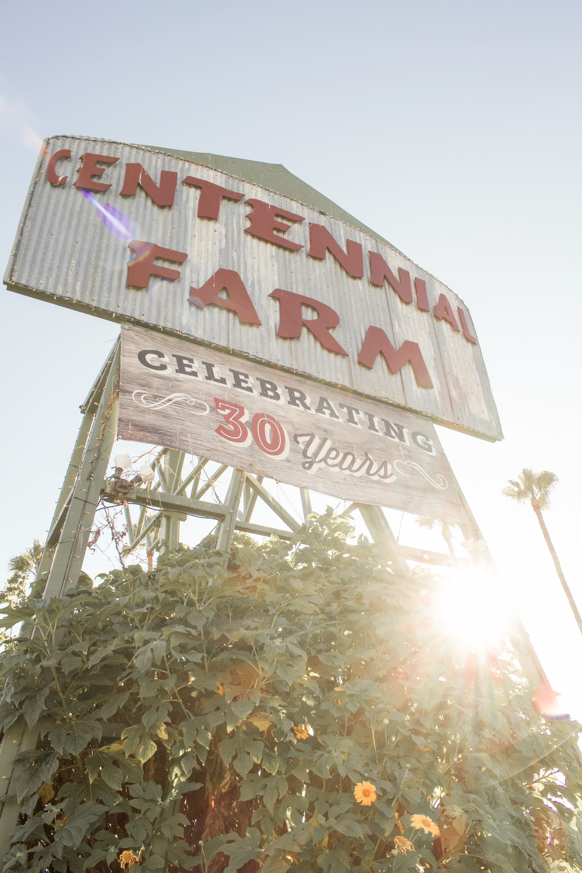 centennial farm oc fair 2019