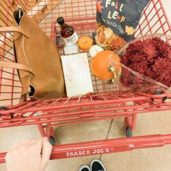 10 Trader Joe's Pumpkin Items to Try This Year