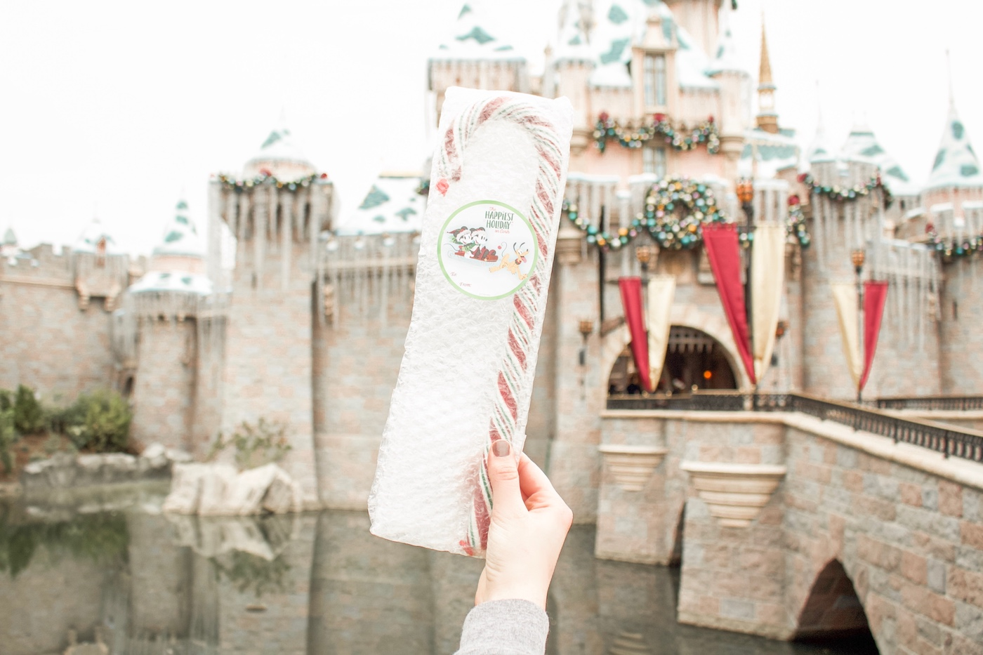 Disneyland Candy Cane guide