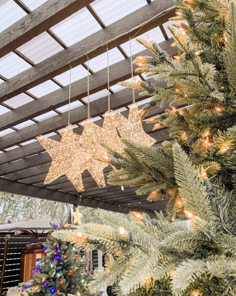 christmas things to do in orange county