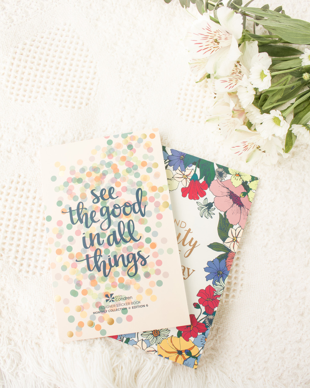 sticker books erin condren